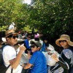 Hutan Mangrove Nusa Lembongan – Tour Murah Nusa lembongan